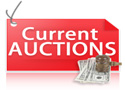 current Max Friz auctions
